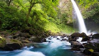 Costa Rica, l'Eden Vert