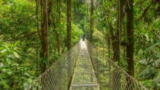Chasse au trésor au Costa Rica