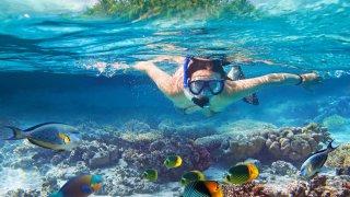 Plongée dans les îles Canaries